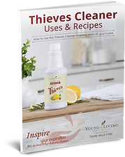 Toxin Free Thieves Cleaner Uses