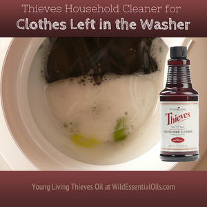 Thieves Cleaner for stinky washing