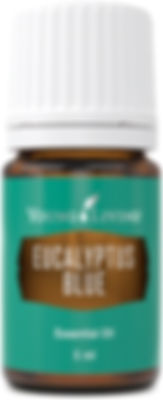 Young Living eucalyptus blue time therapeutic food grade essential oil