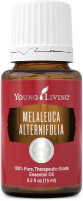 Young Living melaleuca essential oil Australia
