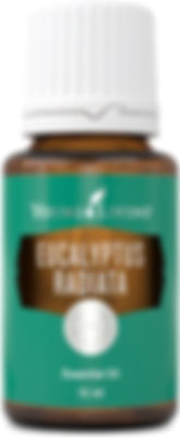 Young Living eucalyptus radiata time therapeutic food grade essential oil