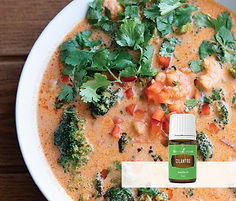 ChefKate_TastyPrawnCurry-Soup_Assets_AUS