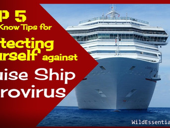 Protecting Yourself against Cruise Ship Norovirus Gastro Illness