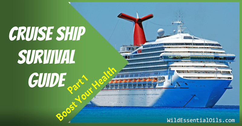 Cruise Ship Survival Guide Boost Your Health