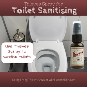 Thieves spray for toilet sanitising | Australia