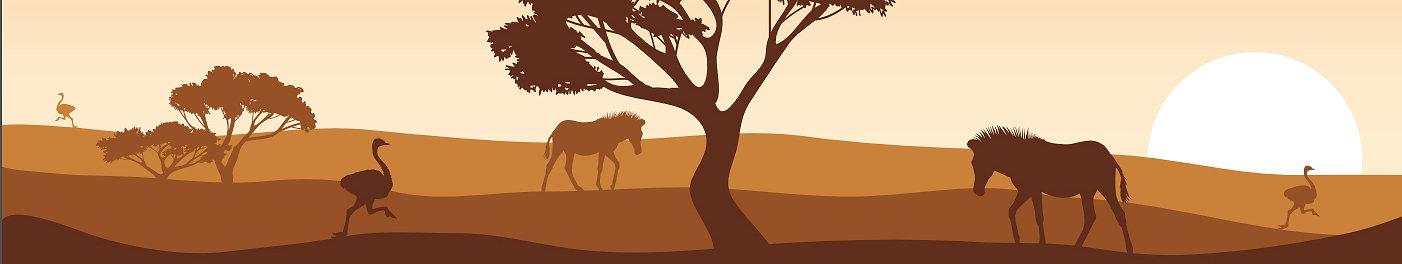 Zebra's en struisvogels site.jpg