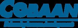 Nieuw logo blauw.png
