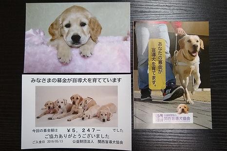 0513盲導犬募金.jpg