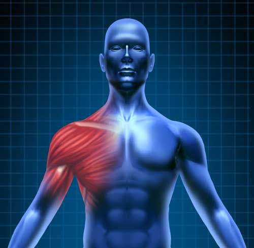 Best Rotator Cuff Doctors Utah