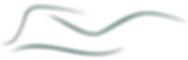 Logo_PS_v2.png