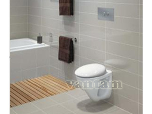 Caroma ROYAL INVISI Wall Hung Toilet