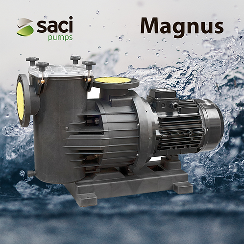 Saci Pumps - Magnus 4 - 1250