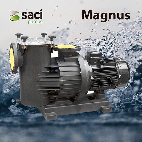 Saci Pumps - Magnus 4 - 400