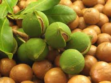 Huile végétale de Macadamia vierge bio - 100 ml