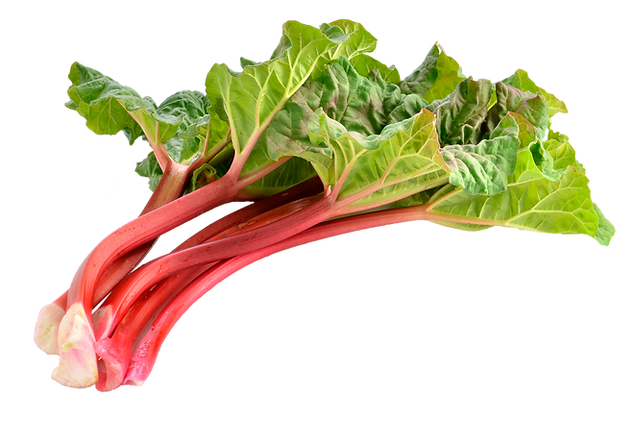 cold sore vitamin ingredient - rhubarb