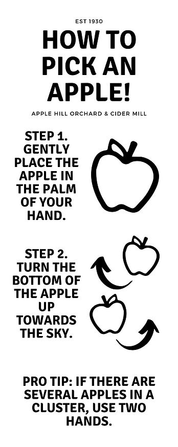 How to pick an apple!.jpg