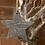 Thumbnail: Ceramic Star
