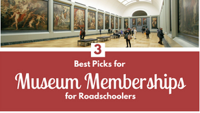 Lions & Tigers & Picasso, Oh My! - Best Museum Memberships