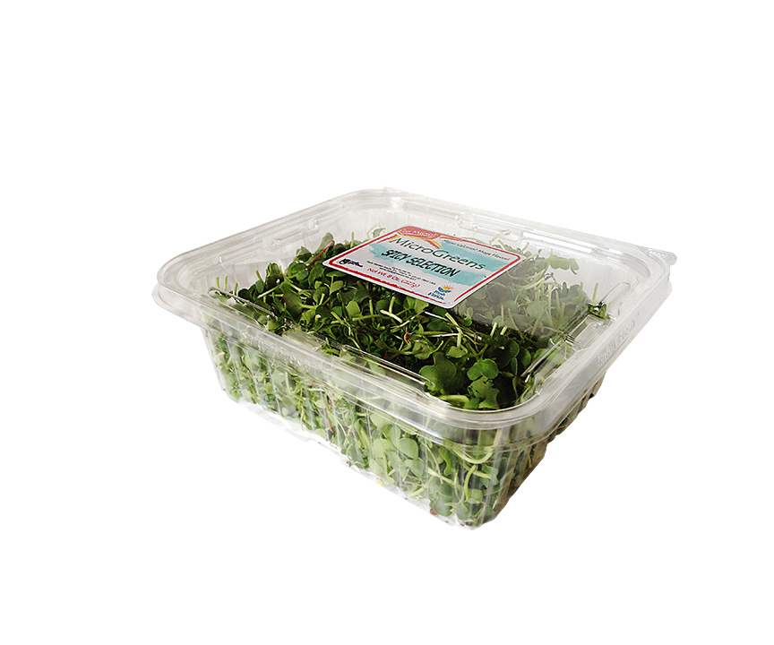 Large Microgreen clamshell=REDUCED