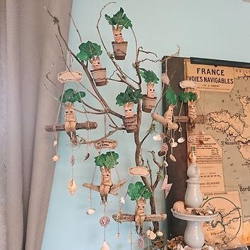 arbre mandragore.JPG