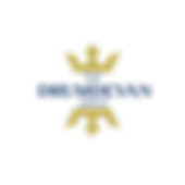 Drumdevan Group Logo.PNG
