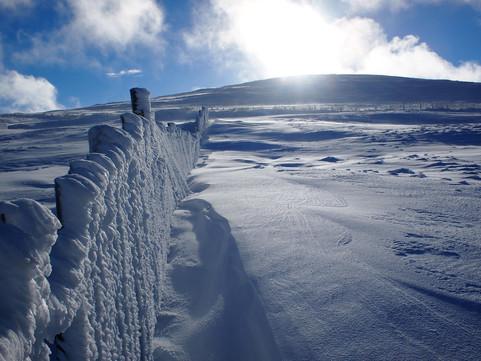 Cairngorm Mountain Reserve