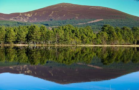 Loch Morlich | Aviemore