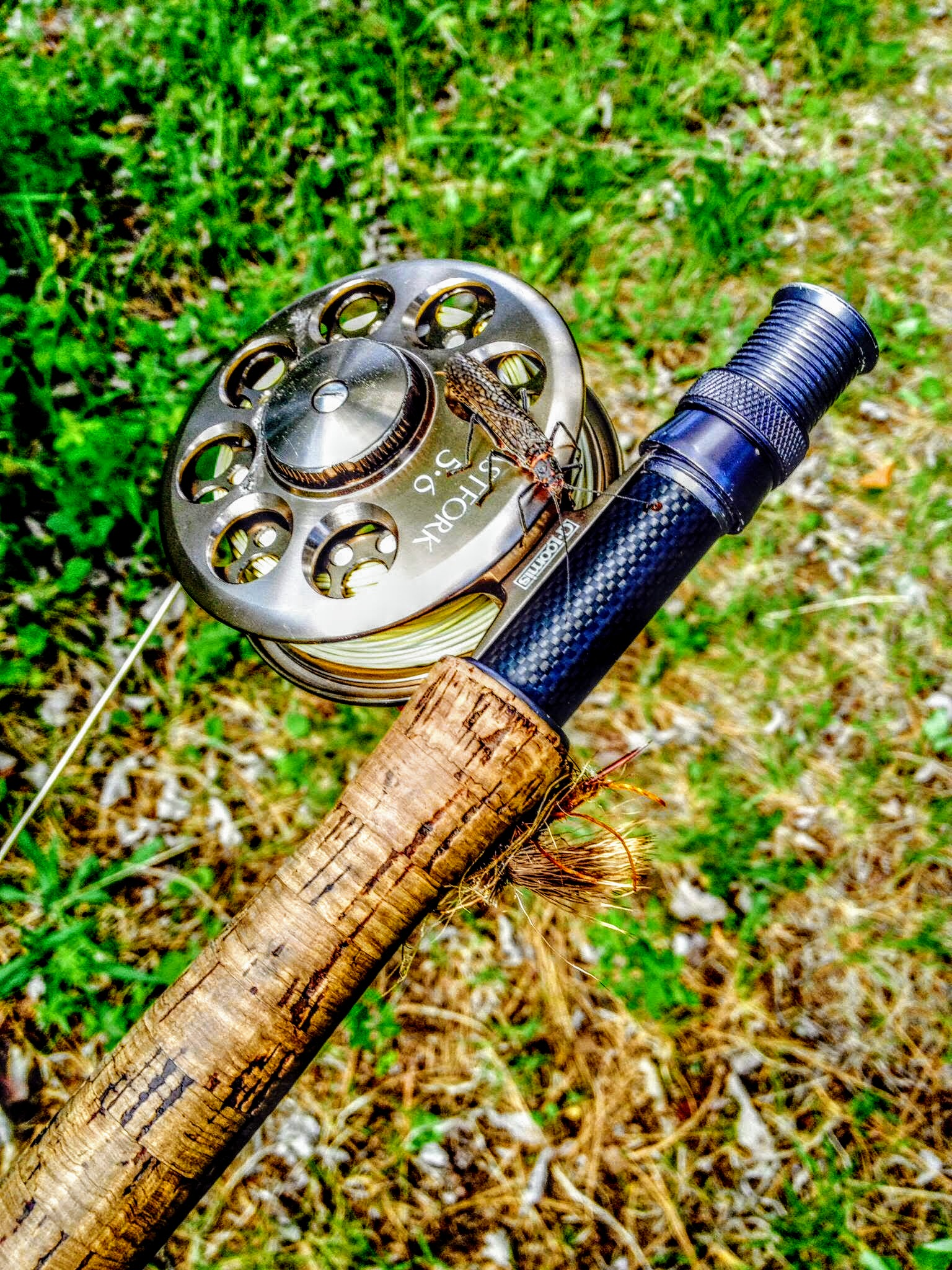 Bunyan Bug on a reel