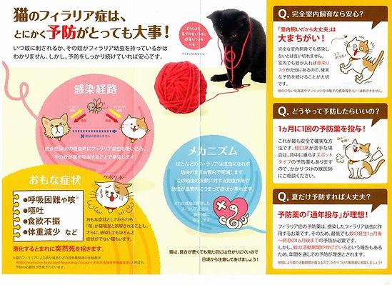稲城市 動物病院 野坂獣医科 猫 フィラリア 2.jpg