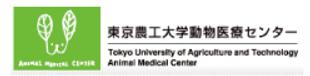 東京都 稲城市 動物病院 ペットホテルトリミング 野坂獣医科.png