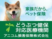 東京都 稲城市 動物病院 野坂獣医科