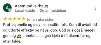 Anmeldelse Google.JPG