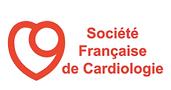 logo SFC.png