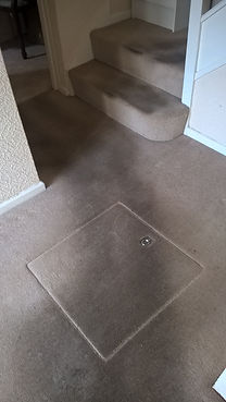 Carpet Before Cleaning in Devon