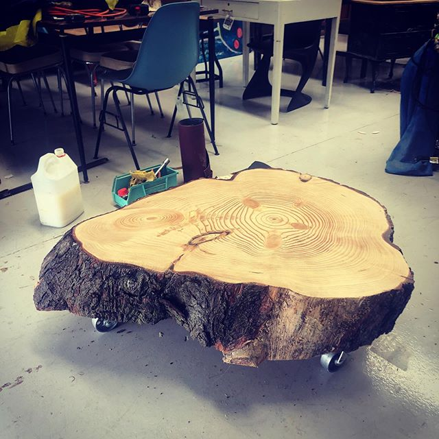 Custom built tree trunk coffee table