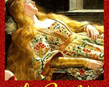 """Au-delà des apparences - Retour du roman de Catherine Choupin, """"la beauté endormie"""""""