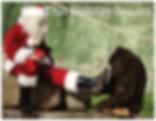 preview 1 wildlife.jpg