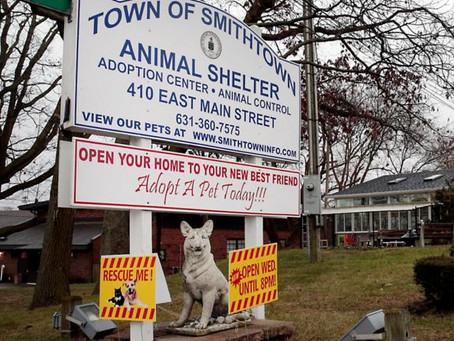 Smithtown Animal Shelter (New York)