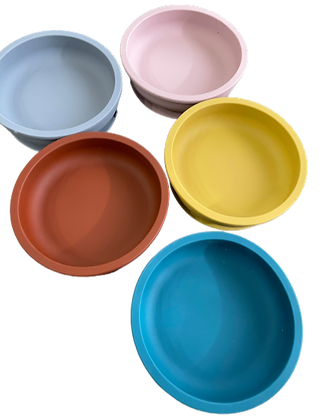 New Shallow Silicone Bowl- Spring Collection