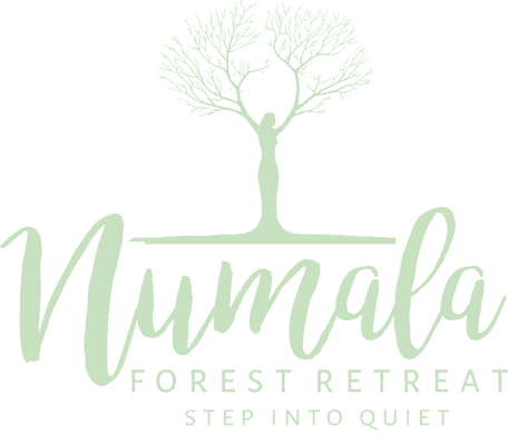 Numala Forest Retreat peaceful and tranquil place for men and women to relax and unwind