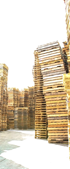 Pallets_edited_edited.png