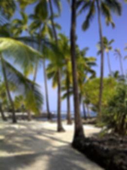 hawaii-1269765_640.jpg