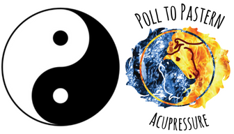 yin and yang symbols showing balance in the world of chi