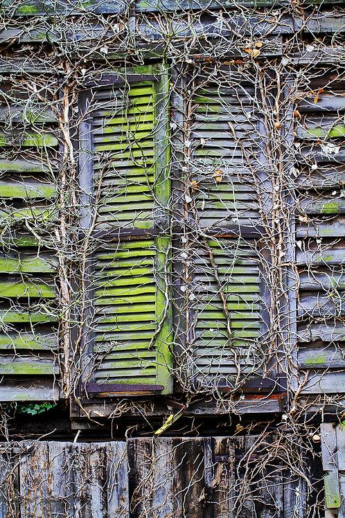 Tirage Photo Nature 1 - A3