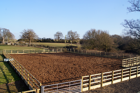 Pinto Fields Livery Yard Windsor & Maidenhead, Berkshire Bark Pen