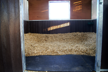 Pinto Fields Livery Yard Windsor & Maidenhead, Berkshire | Shavings Bed