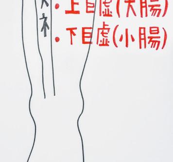 【胃腸を整える大事なツボ】鍼灸ゆーせん/大阪府八尾市