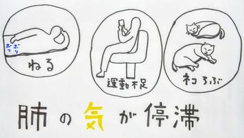 【顔面神経麻痺(ベル麻痺)と東洋医学③】/鍼灸ゆーせん/大阪府八尾市