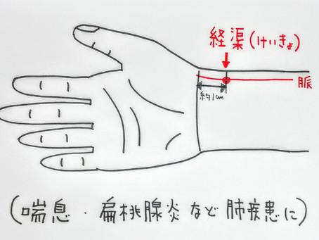 【喘息、扁桃腺など呼吸器疾患のツボ  経渠】大阪府八尾市/鍼灸ゆーせん