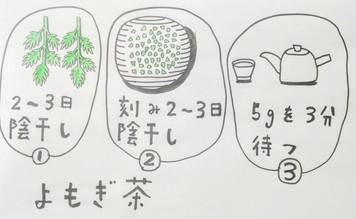 【冷え症に良い、よもぎ茶の作り方❗️】鍼灸ゆーせん/大阪府八尾市